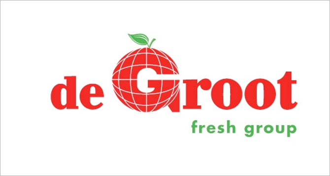 logo de-groot-international | Lingedael Corporate Finance